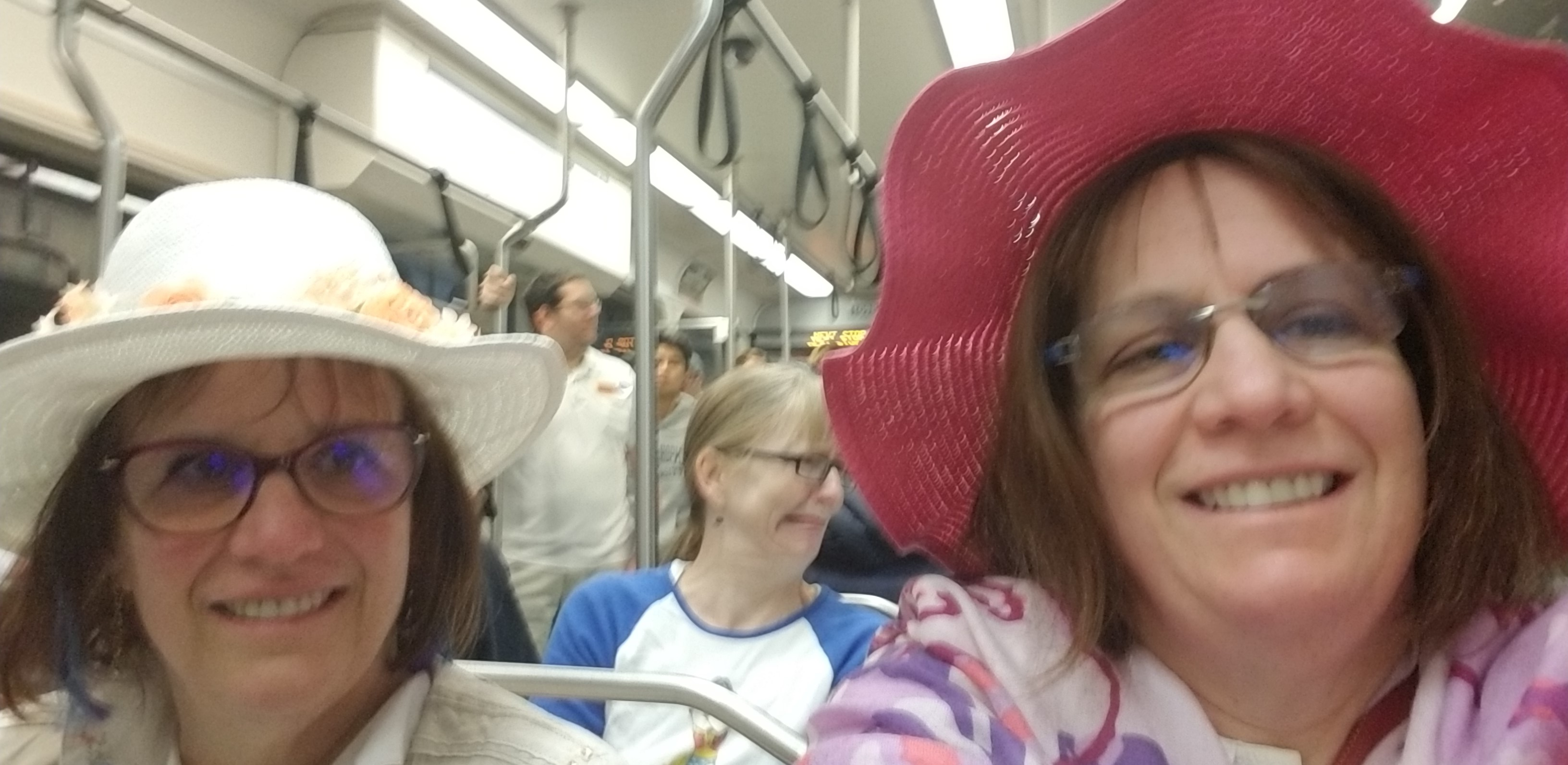 picture of My selfie of my twin sister and myself on the Seattle Light Rail heading to the #BringFamiliesTogetherMarch at Angle Lake south of SeaTac, WA. We are sitting on the train. My sister in the white hat is on the left and I'm on the right wearing a fushia-colored hat.
